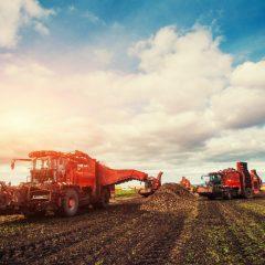 Zdolność kredytowa rolnika