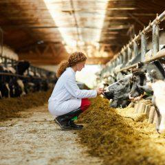 Ubezpieczenia dla rolników – obowiązek ubezpieczenia budynków
