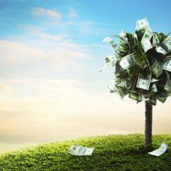 Dla kogo przeznaczone są kredyty obrotowe?